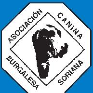 Canina Burgalesa Soriana